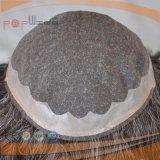 PUのボーダー人間の毛髪灰色カラー毛の部分(PPG-l-0568)