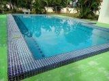 Waterproof&Dirt-Bestand de Lijm van de Tegel van het Zwembad