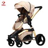 2017 baute Version des Anoden-Baby-Spaziergängers aus
