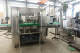ガラスBottgleのパルプのフルーツジュースの満ちる包装を完了し生産ラインを作る