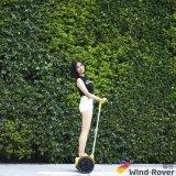 Собственная личность самоката пинком 2 колес балансируя миниый электрический самокат удобоподвижности