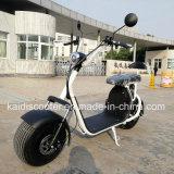 オフロード電気スクーターの脂肪質のタイヤ1000W 60V Harley