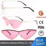 O mais novo óculos de sol de moda do Olho de Gato