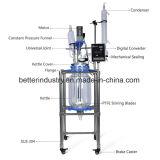 Reattore di vetro 10L 20L 50L 100L del bioreattore