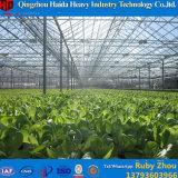 Парник тоннеля полиэтиленовой пленки для томата от изготовления/Invernadero Китая