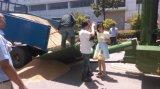 L'Italie de la technologie mobile tournesol Grain Sécheur sécheur