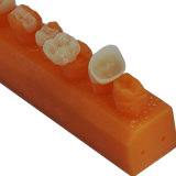 Dental Lab에 있는 치과 CAD Cam Zirconia Service