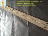 Charnière de piano de matériel de porte de charnière de guichet