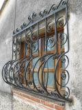 Einfaches Eisen verzierte Fenster