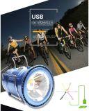 Éclairage LED solaire extérieur de fonction multi avec l'USB