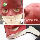 Máscara del látex de Víspera de Todos los Santos de la alta calidad del precio de fábrica