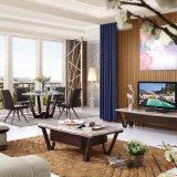 De Tribune van TV van de woonkamer (LTV2014)