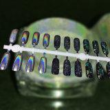 Pigmento lucido olografico d'argento della polvere di scintilli del chiodo della polvere dello specchio del laser