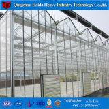 Serra di plastica di vetro del policarbonato di Polytunnel della multi portata di basso costo