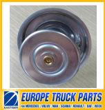 0042038375 Thermostat-Selbstersatzteil für MERCEDES-BENZ