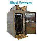 Мясо в коммерческих целях Blast морозильной камере / Быстрый морозильной камеры с 120 кг