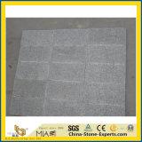 G603 de Tegels van de Straatsteen/van de Vloer & van de Muur van het Graniet