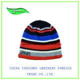 Nuevo sombrero multicolor hermoso promocional del Knit del bordado