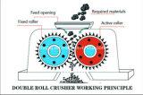 石炭の押しつぶすことのための二重歯のローラー粉砕機