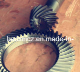 Vitesses en acier de Tableau rotatoire de pièce forgéee et d'alliage de fonderie