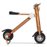 13 pouces 22.5kg 250W noir léger scooter pliable à mobilité réduite