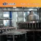 Hy-vullende Hete het Vullen van het Sap van het Glas Machine