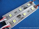 Sechs Baugruppe der Farben-IP65 SMD LED für das Bekanntmachen