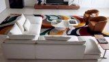 Venta caliente del estilo europeo Nuevo diseño de la combinación del sofá