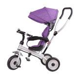 Triciclo do bebê de 3 rodas com dossel e cesta