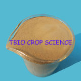 La poudre d'acides aminés