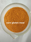 Le gluten de maïs pour nourrir de poulet