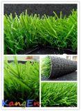 Sythetic Grass pour Landscaping avec Core (QDS-35)