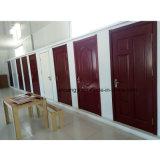 Hölzernes Innentannen-Panel lamellierte Türen mit Rahmen