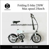 مدنيّ [موبليتي] درّاجة كهربائيّة ماليزيا [300و]