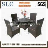 Пластичная мебель ротанга/мебель мебели установленная/Bamboo (SC-M0035)