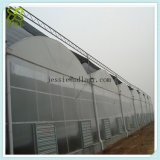 Chambre verte de film modulaire de serre chaude d'abri de pluie