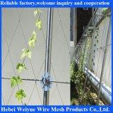 緑プラントのためのステンレス鋼ロープシステム