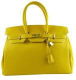 Het hete Ontwerp van de Manier van de Verkoop Modieuze Nieuwe Dame Handbags