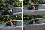 Los nuevos elementos directamente de manos libres innovador paraguas invertido de retroceso (SU-0023FI)