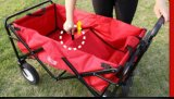Тележка пляжа контейнера крена песка детей использования фуры Китая