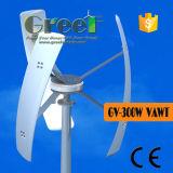 300W небольшой вертикальной ветряной мельницы с Coreless генератор постоянного магнита