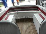 6.3m Geschwindigkeits-Boote mit Doppelaußenbordmotoren
