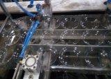 Plastiktellersegment und Kappe, die Maschine herstellt