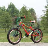 새로운 아이들 자전거 작은 아이 자전거 PU 바퀴
