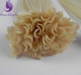 人間の毛髪の拡張倍によって引かれる前に結ばれたU先端の毛の拡張(UT09)