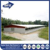 Camera liberata di ben progettata di pollicultura della struttura d'acciaio di Qingdao