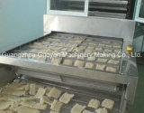 Chaîne de production de nouilles d'onde de riz