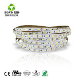 12V 24V 110V 220V SMD 5050 Bande LED Cordon LED (60LED/m)