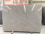 Bala de dalles de granit blanc&carreaux de revêtement de sol en granit&Walling