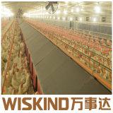 Il disegno prefabbricato ha fatto la Camera chiara del pollame della struttura d'acciaio